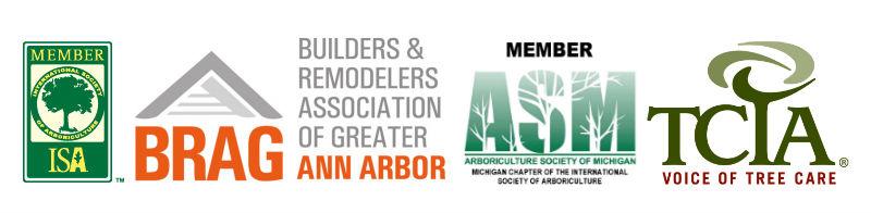 association_logos.jpg