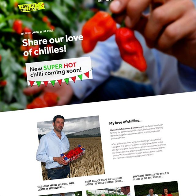 Bit of a website redesign for @lovemychillies in preparation for the launch of the Armageddon 🌶🌶🌶 . . #webdesign #website #design #graphicdesign #bedford #bedfordbusiness #branding #bedfordshire #lucky14 #bedshour #illustration #logodesign #logo #marketing