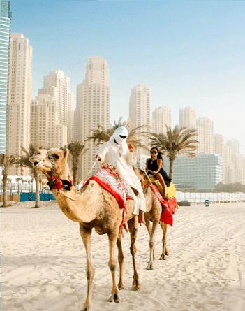 camel-riding.png