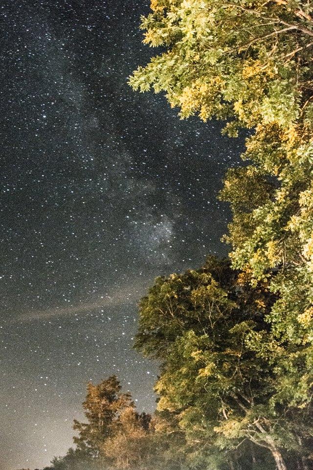 NightSky_Stars.jpg