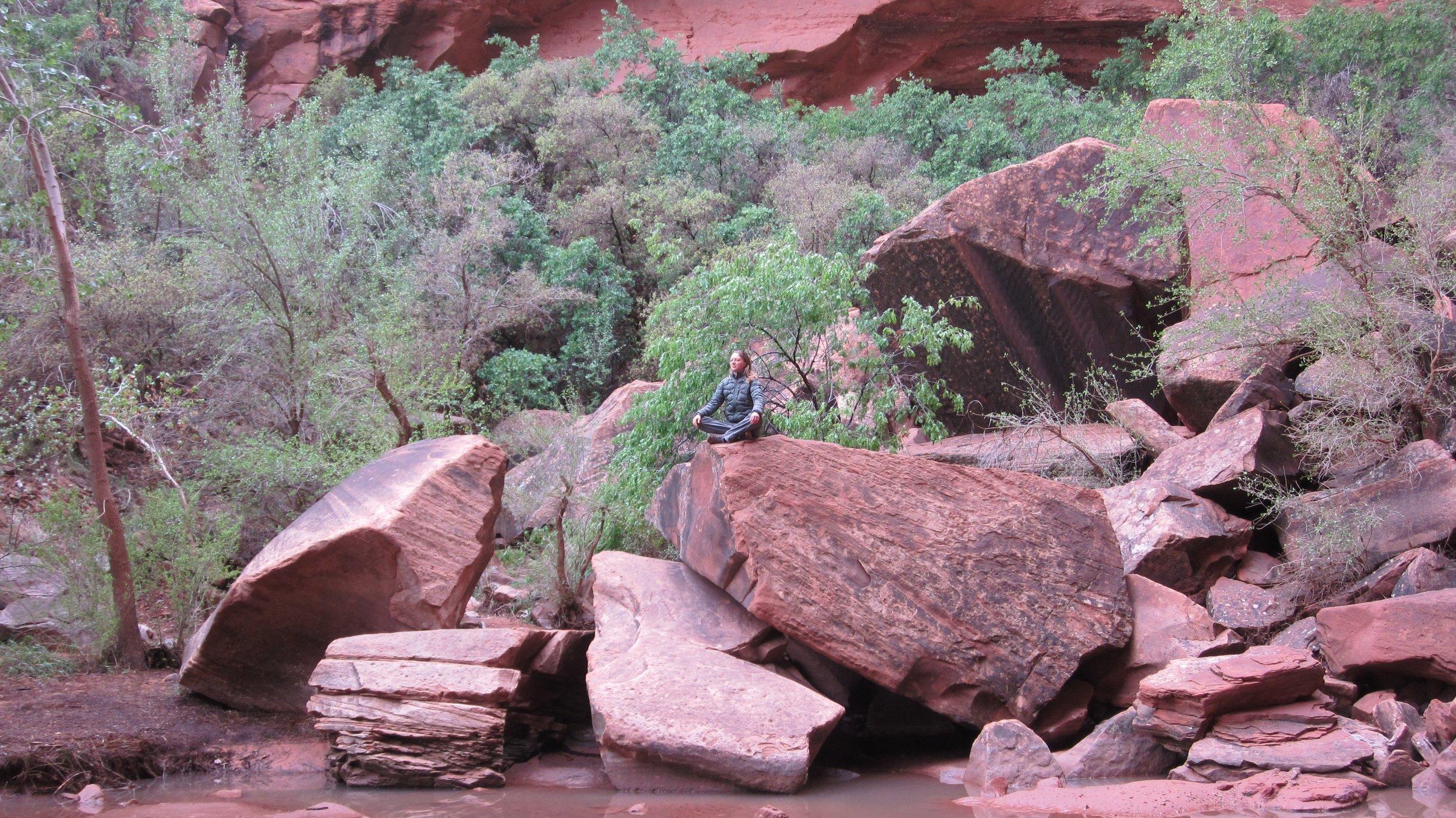 moonflower canyon meditation.jpg