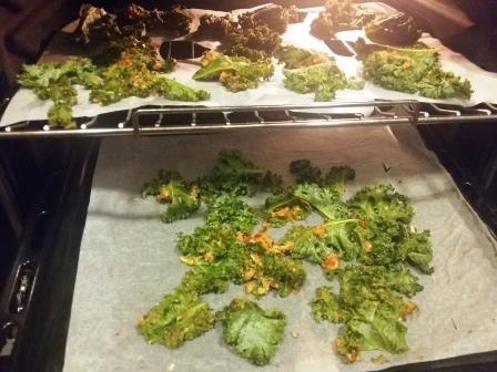 Kale-Chips-dehydrating.jpg