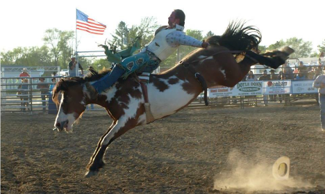 Matt competing in bare back bronc riding