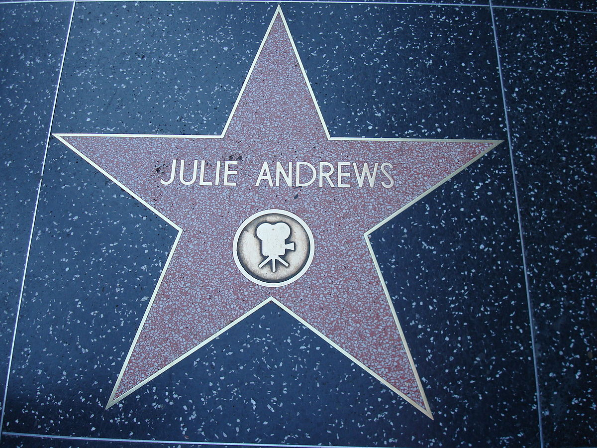 Fun Fact: Did you know that the Hollywood Walk of Fame is made of terrazzo?!