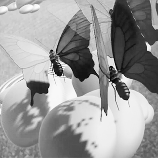 BLUE BUTTERFLY - Augmented Reality App