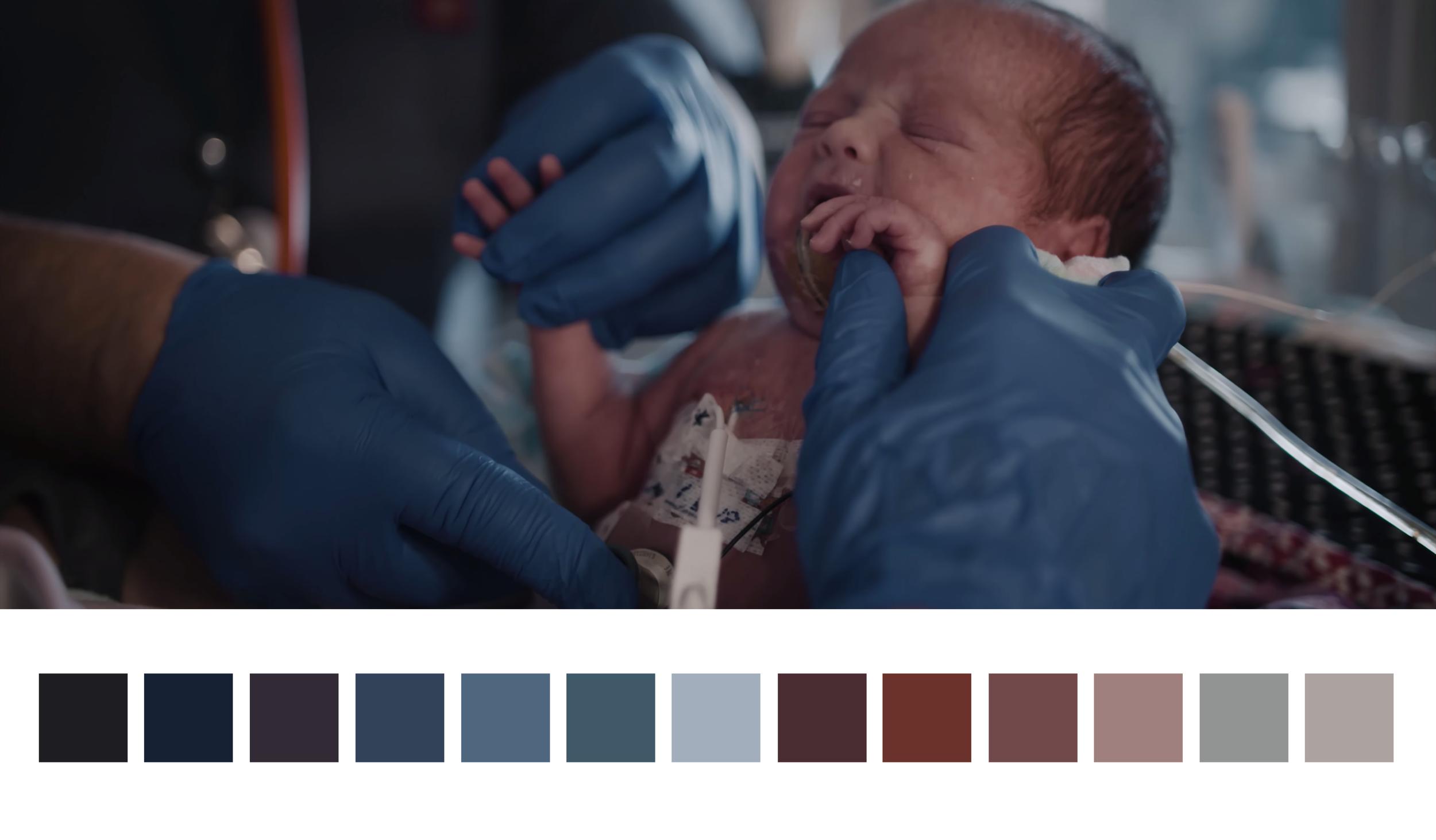 CMN - Color Palette.png