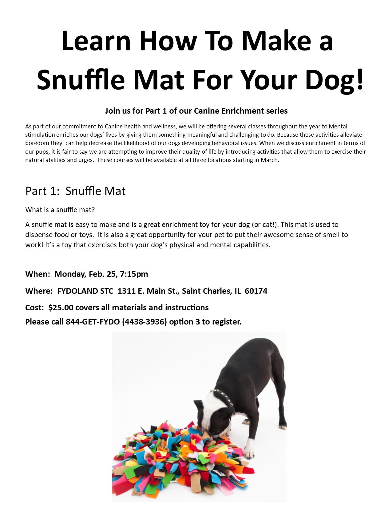 class 1 snuffle mats.jpg