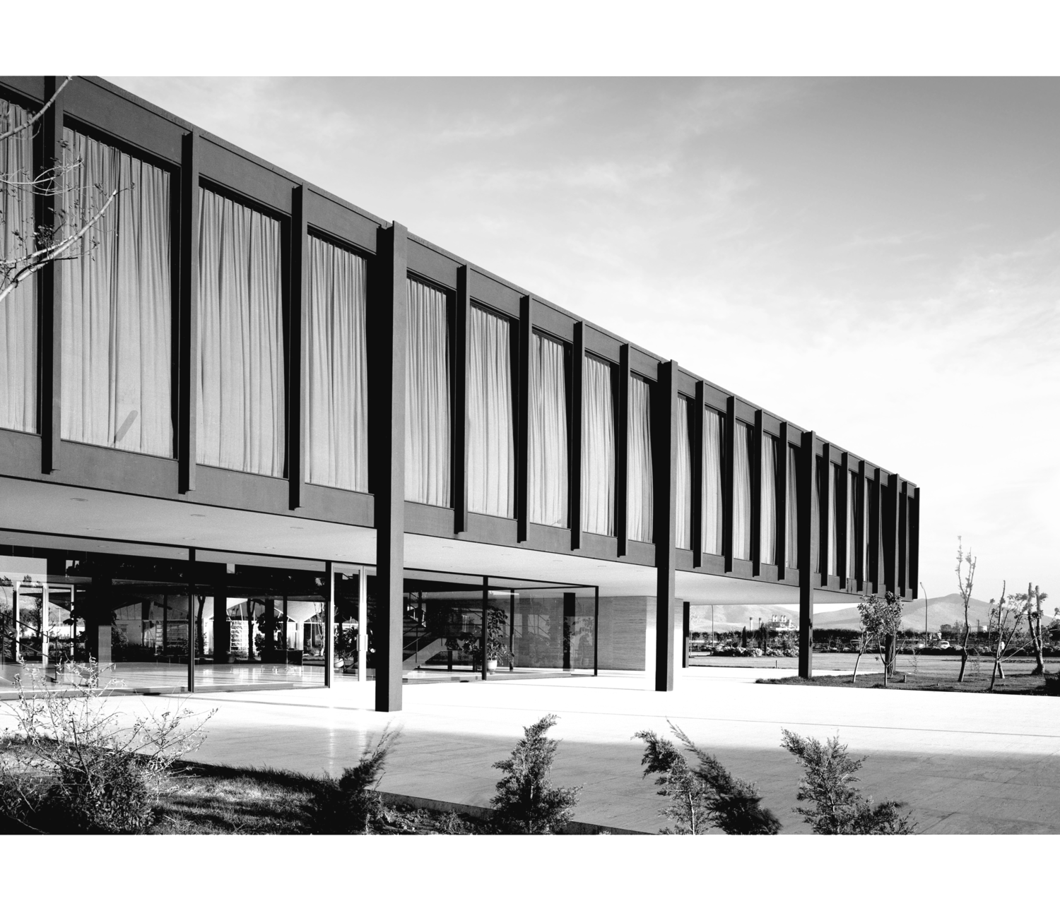 Mies Van Der Rohe Bacardi Building The Modernist Collection