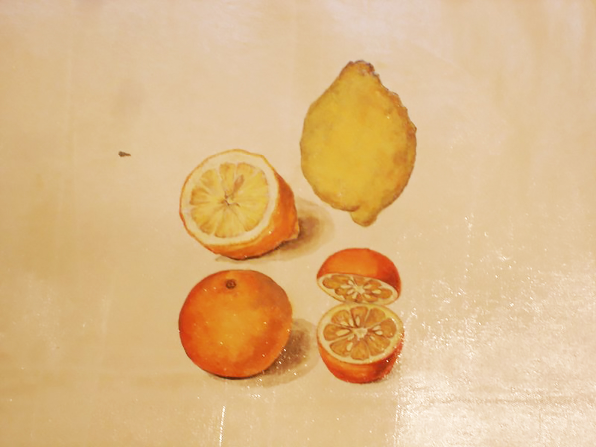 orange lemons.jpg