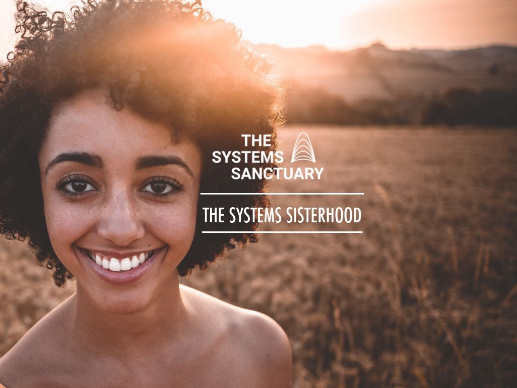 The Systems Sisterhood   Curated peer learning programs of women working for systems change, who need peer support.