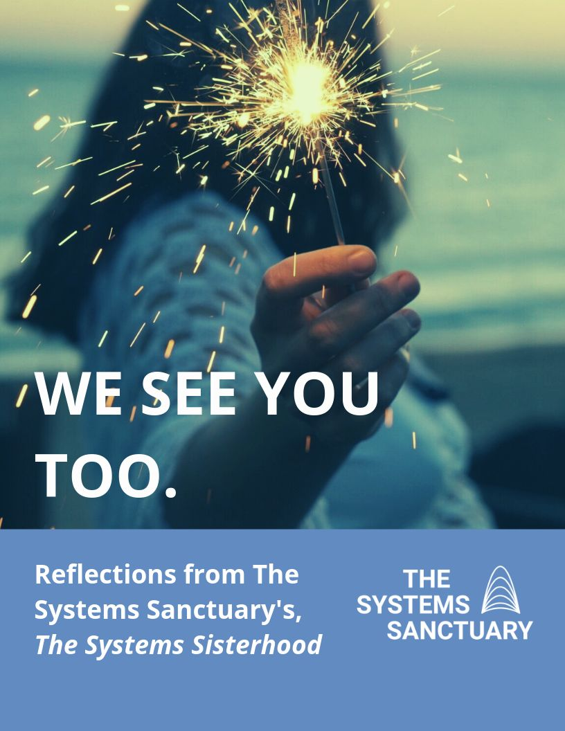 Learning publication The Systems Sanctuary. jpg
