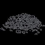lentils illustration