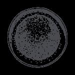 Matcha-Powder-Illustration-150x150-12.png