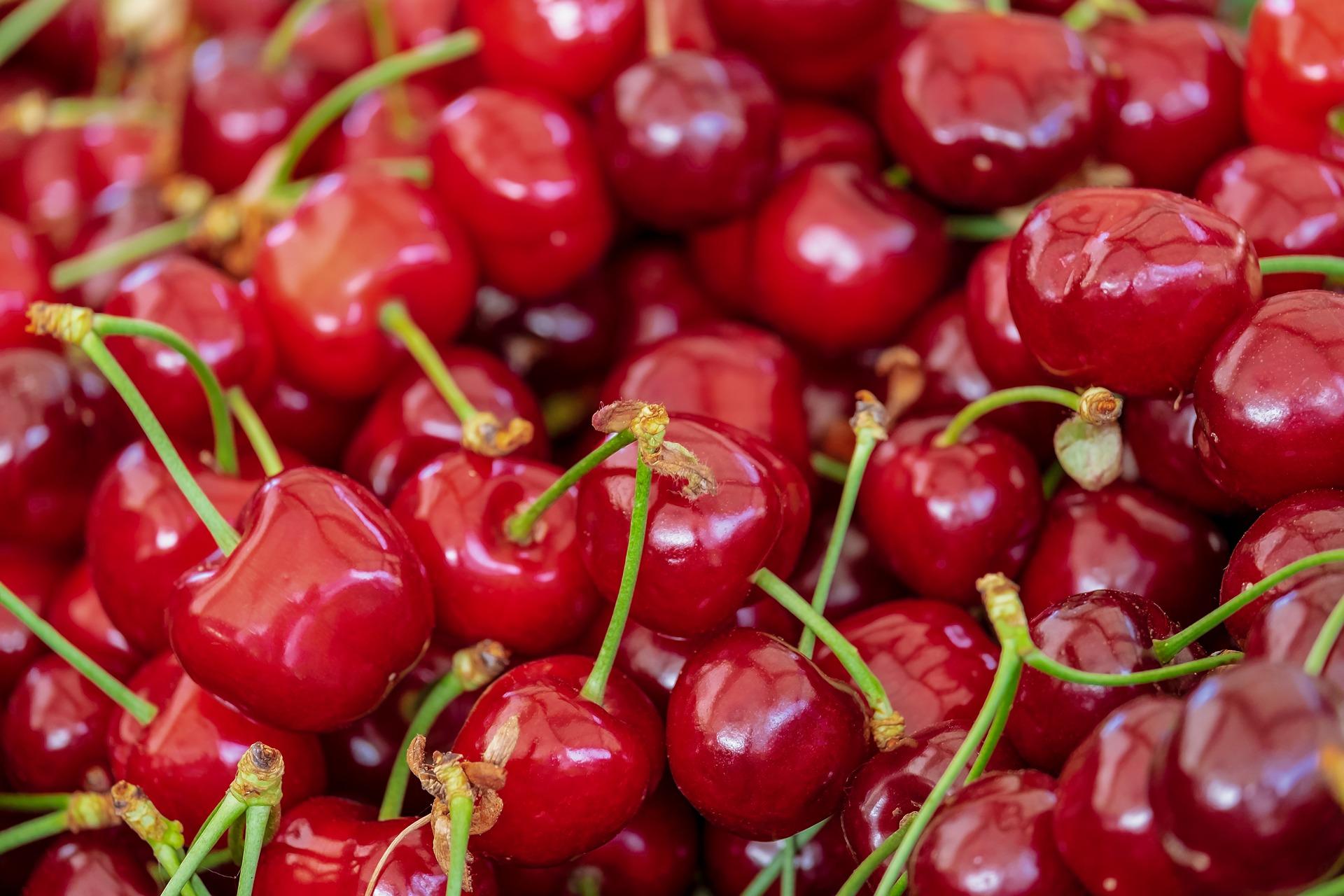 cherries-3433775_1920.jpg