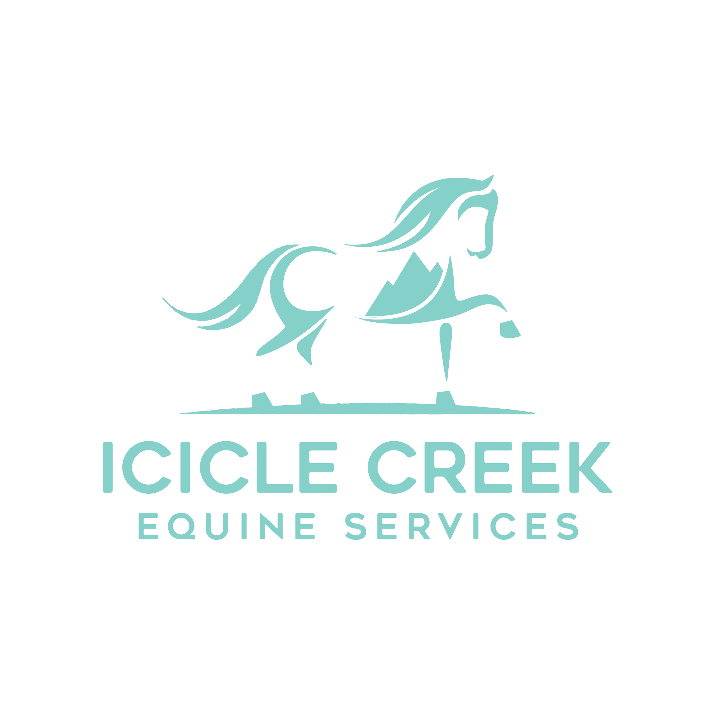 Katie Garrett at   Icicle Creek Equine Services   is a barefoot trimmer in the Wenatchee Valley. Offering corrective and preventative hoof care as well as custom boot fitting and glue-ons.