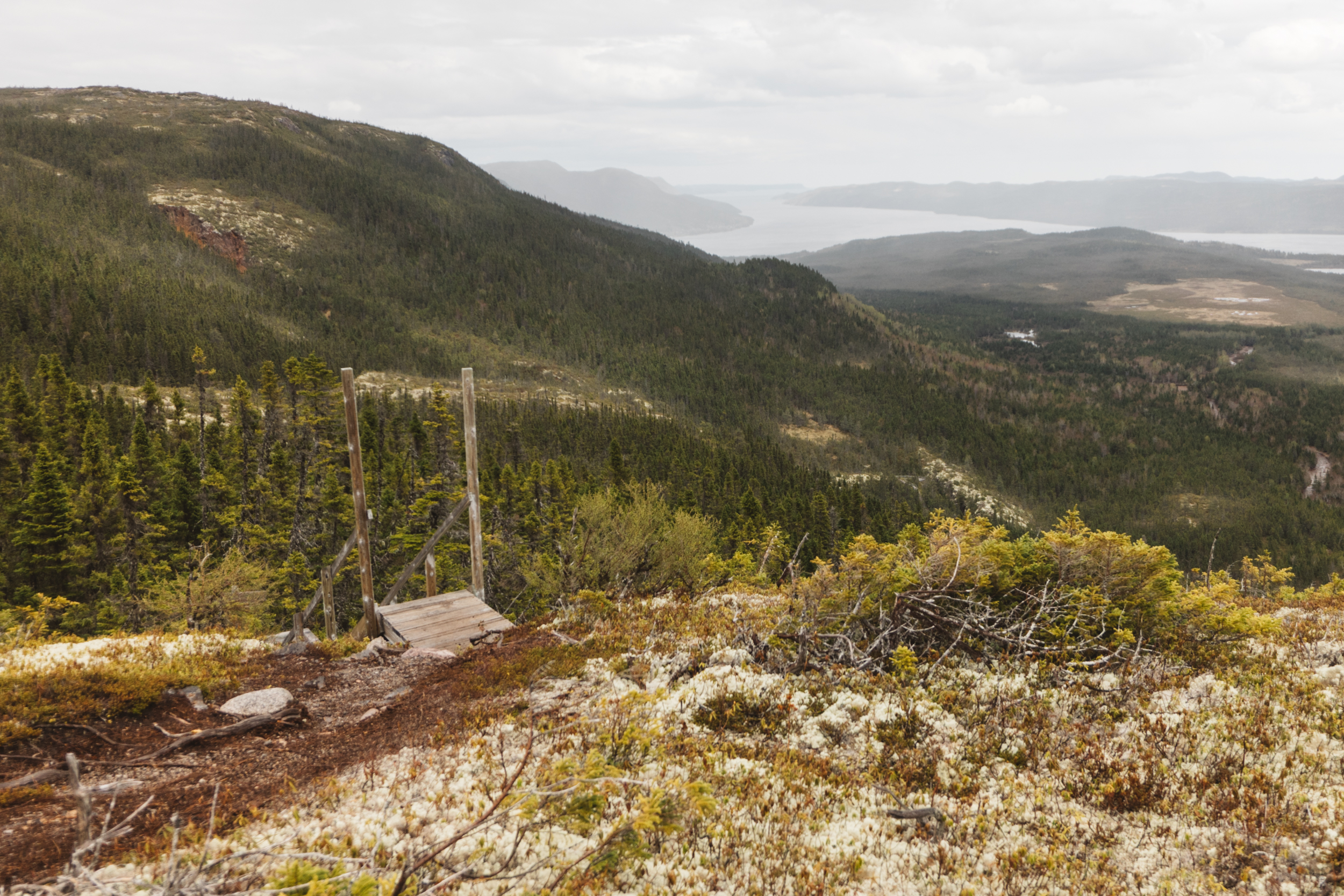 View From Top Of Alexander Murray Trail