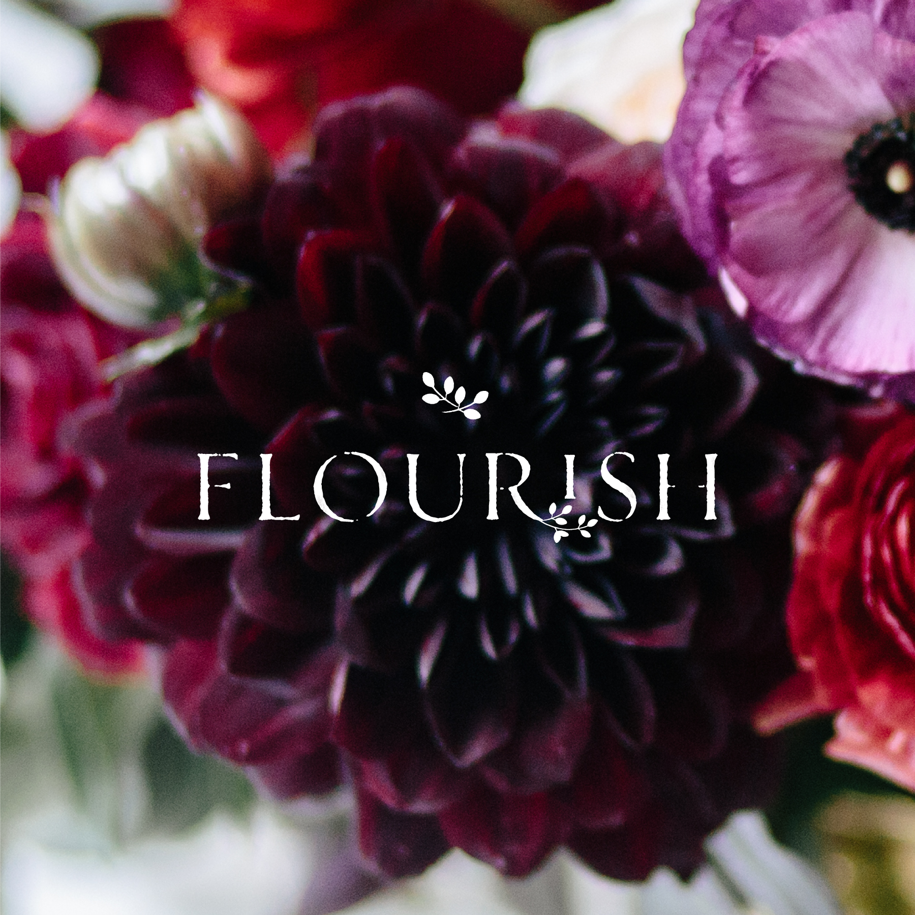 Flourish : Branding, Web design.