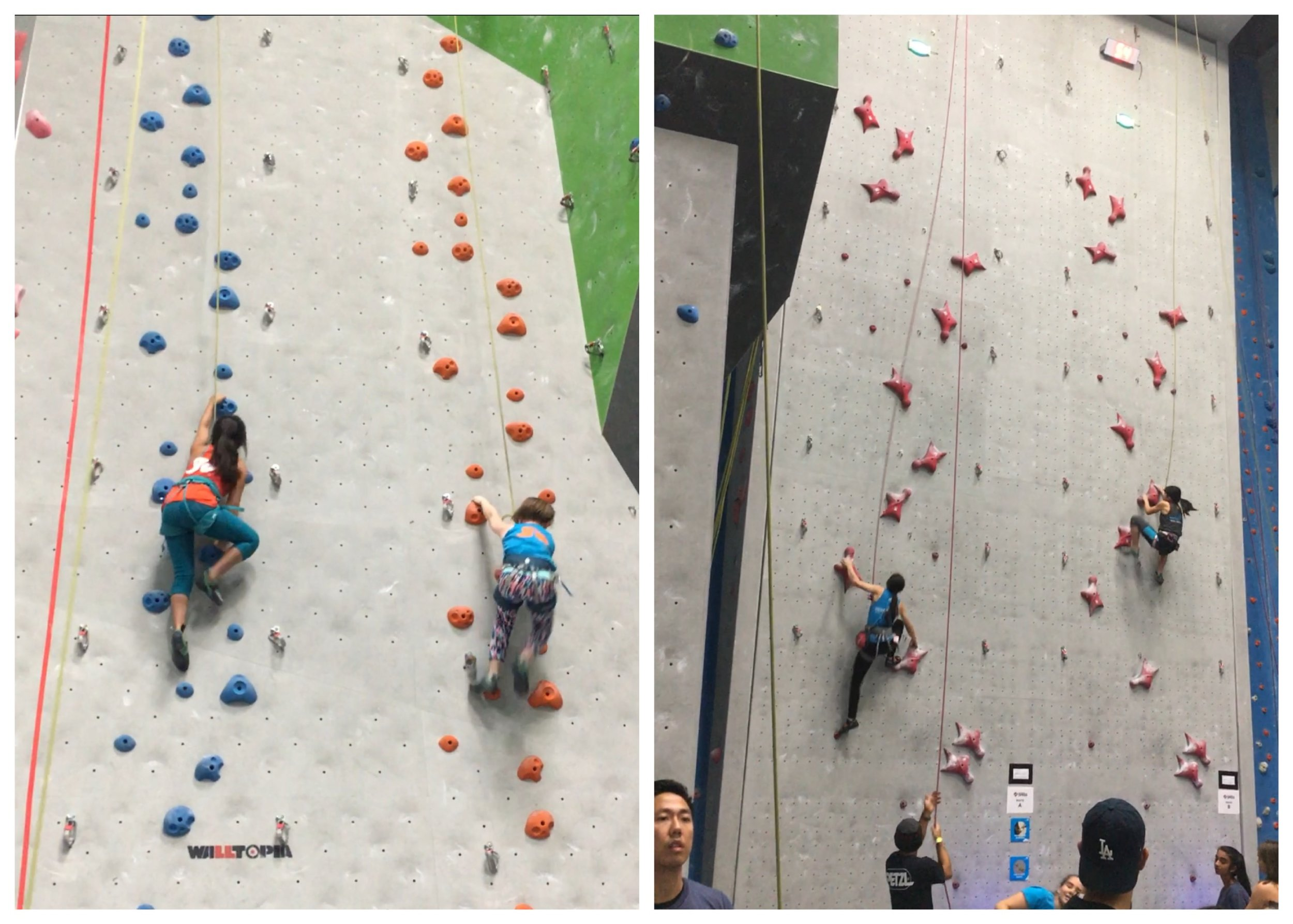 Left side: jug haul style speed climb (cowbell finish not shown). Right side: 10m regulation speed wall with electronic pads and timing (very cool).