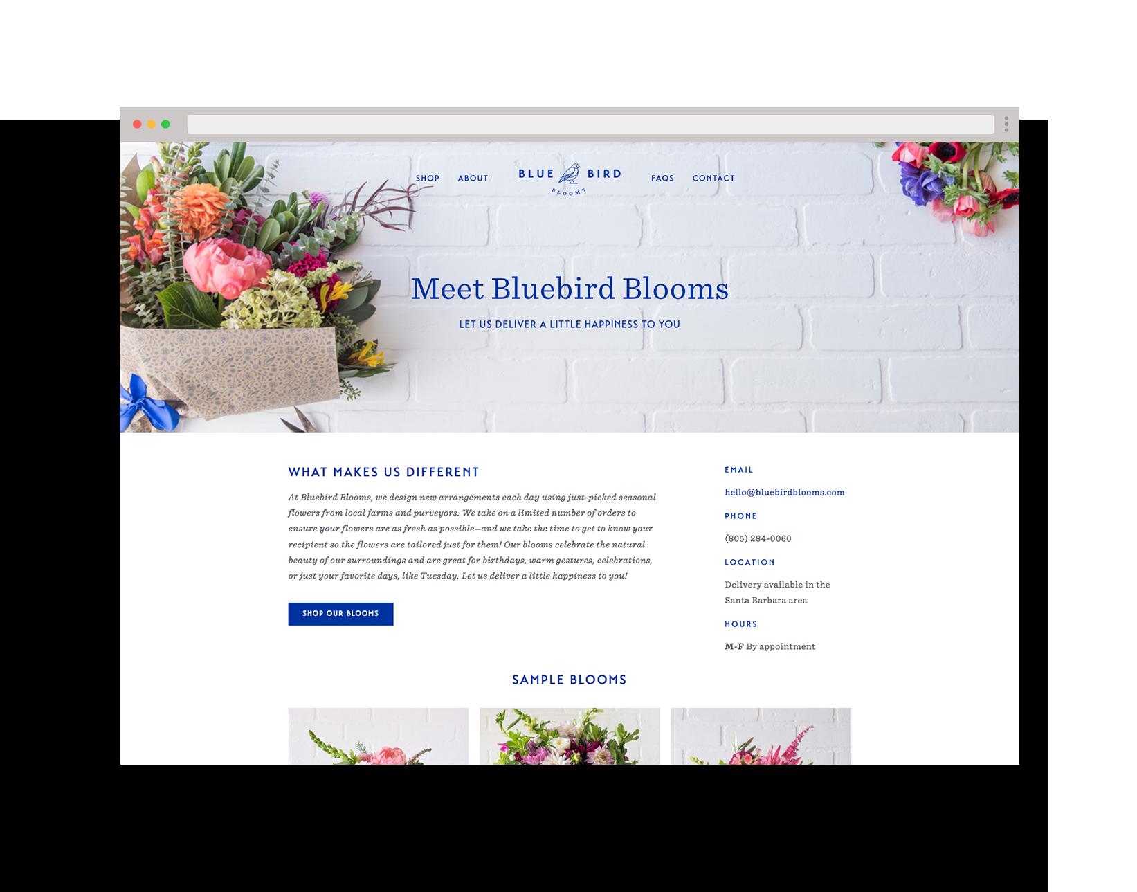 bluebird-browser-hp.png