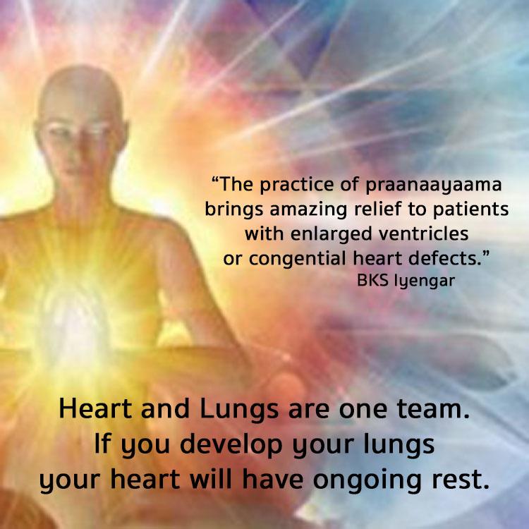 heart.lungs.jpg