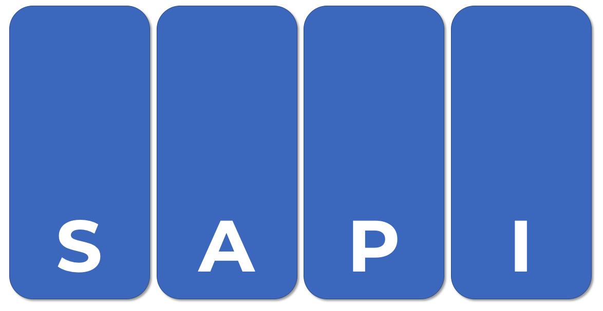 SAPI copy.png