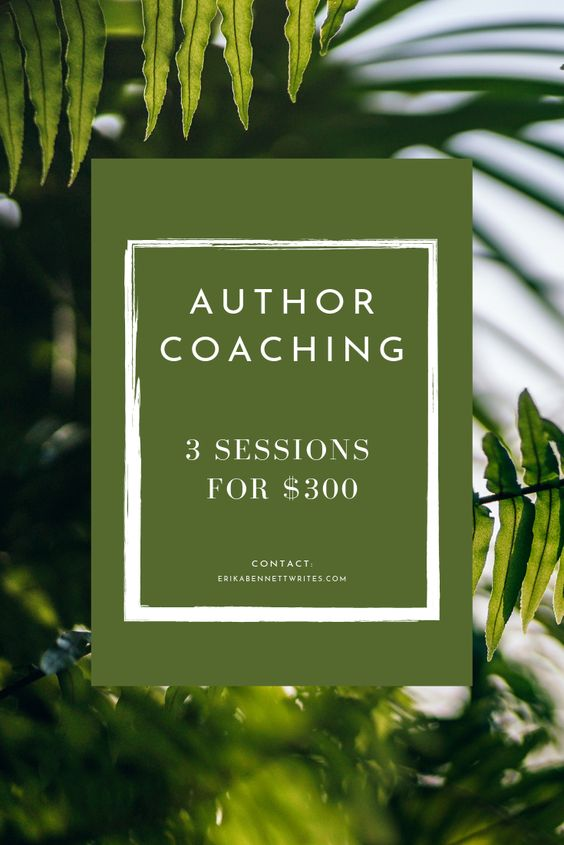 Let's write your book together! - This offer is for fiction, nonfiction, and short story writers.
