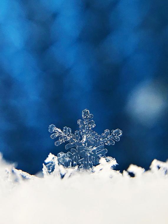 snowflake print .jpg