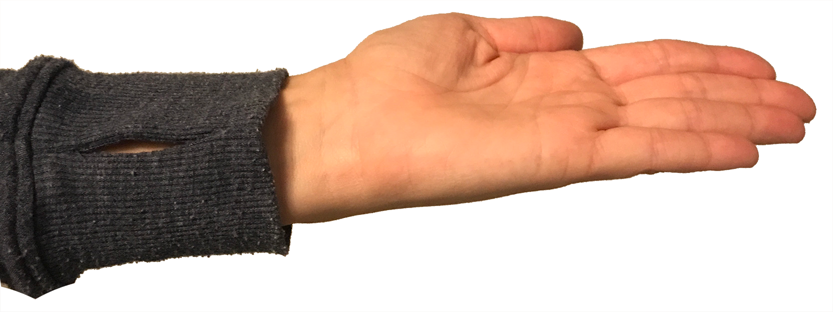 Hand-Flat.png