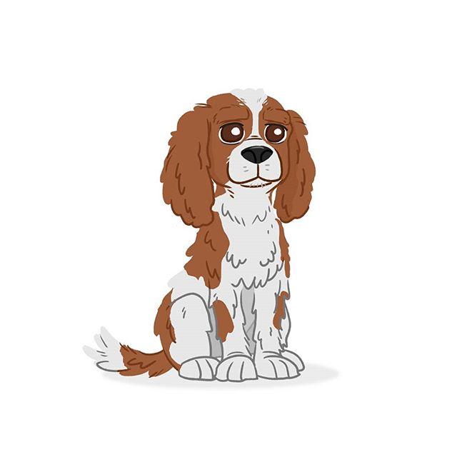 More like Cavalier Queen Charles.  #iwilldrawyourdog #dogadaymay #seewhatididthere  #cavalierkingcharlesspaniel #kingcharles  #spaniel #dogs #dogoftheday #daisy #princessdaisy #mario #supermario #games #art #drawing #illustration