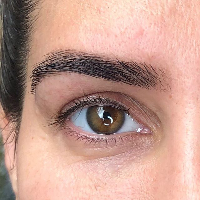Revitabrow makes brows BOLD. This is about a year of Revitabrow and a Brow Wax & Tint. . . . . #sapienaesthetics #browwax #brows #eyebrows #arch #fullbrows #seattleesthetician #estheticianlife