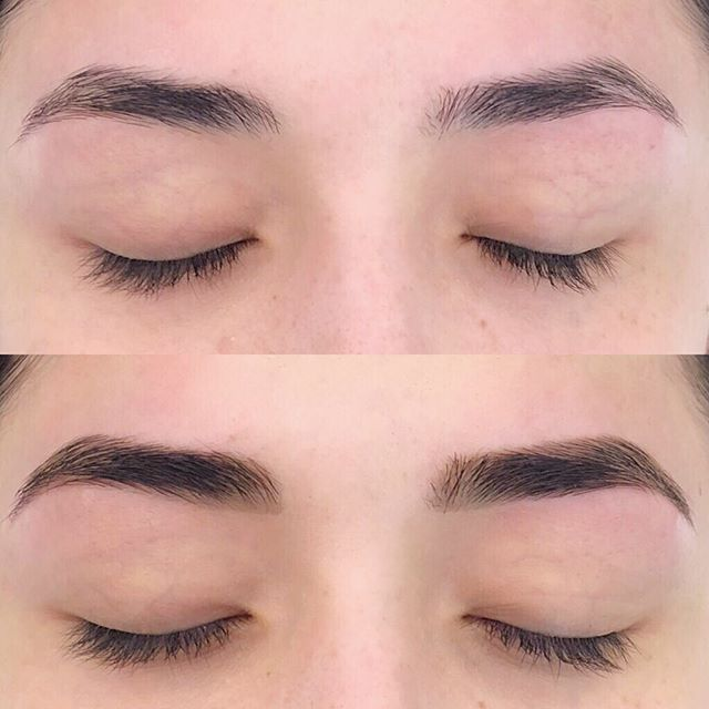 This is what Brow Henna & Wax looks like✨ . . . . . #sapienaesthetics #browwax #brows #eyebrows #arch #fullbrows #seattleesthetician #estheticianlife #elleebanahenna #hennabrows #hennabrowsseattle #anastasiabeverlyhills #archaddicts #huddabeauty #boybrow #capitolhill #seattlespa #realself #newbeauty