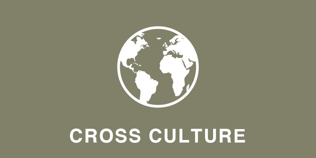 - 異文化理解日本文化と異文化を比較 / 考え方や行動の違い / ケーススタディを使ったグループワークなど(課題に対する解決策を見出す)