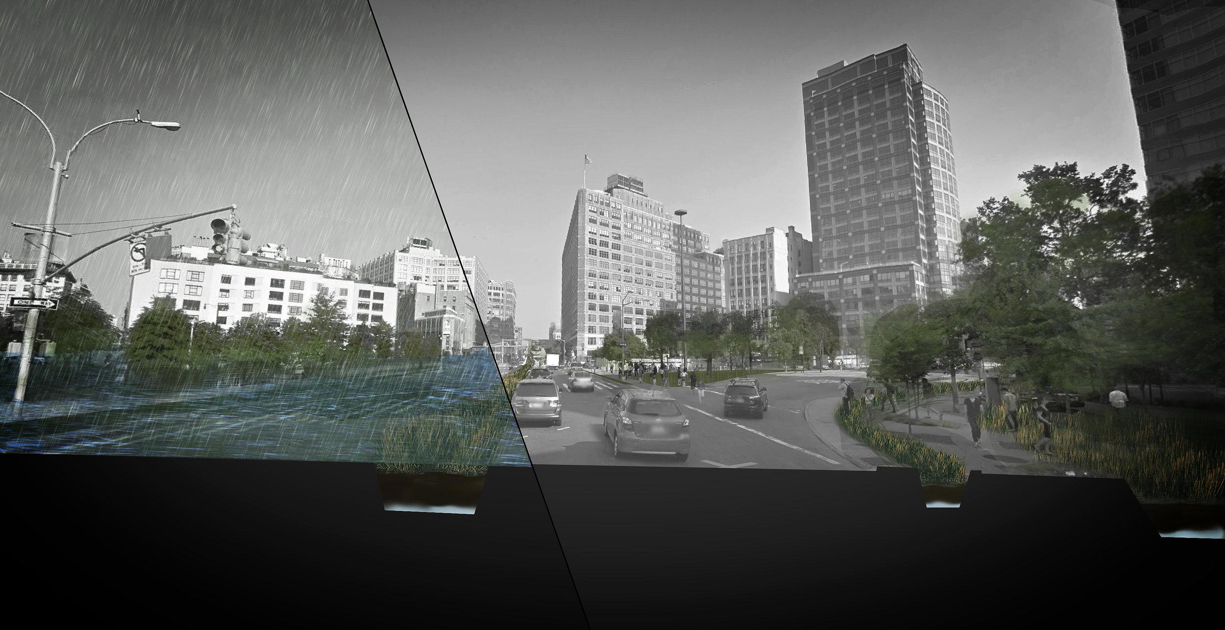 Perspective1_edit.jpg