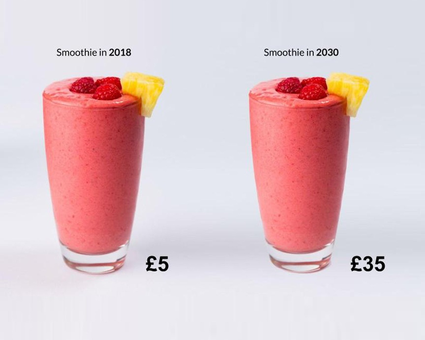 Context - Population boom and the effects of climate change may result in changes in crop cycles and exhausted agriculture, bringing about a shortage on natural foods. As prices increase, we may develop a dependance on engineered and processed food that lack nutrients. In summary, your £5 smoothie could potentially cost up to £35 in 2030.Work completed with Hiu Ki (Elijah) Ko, XiaoHui Wang, Yiyang Shen