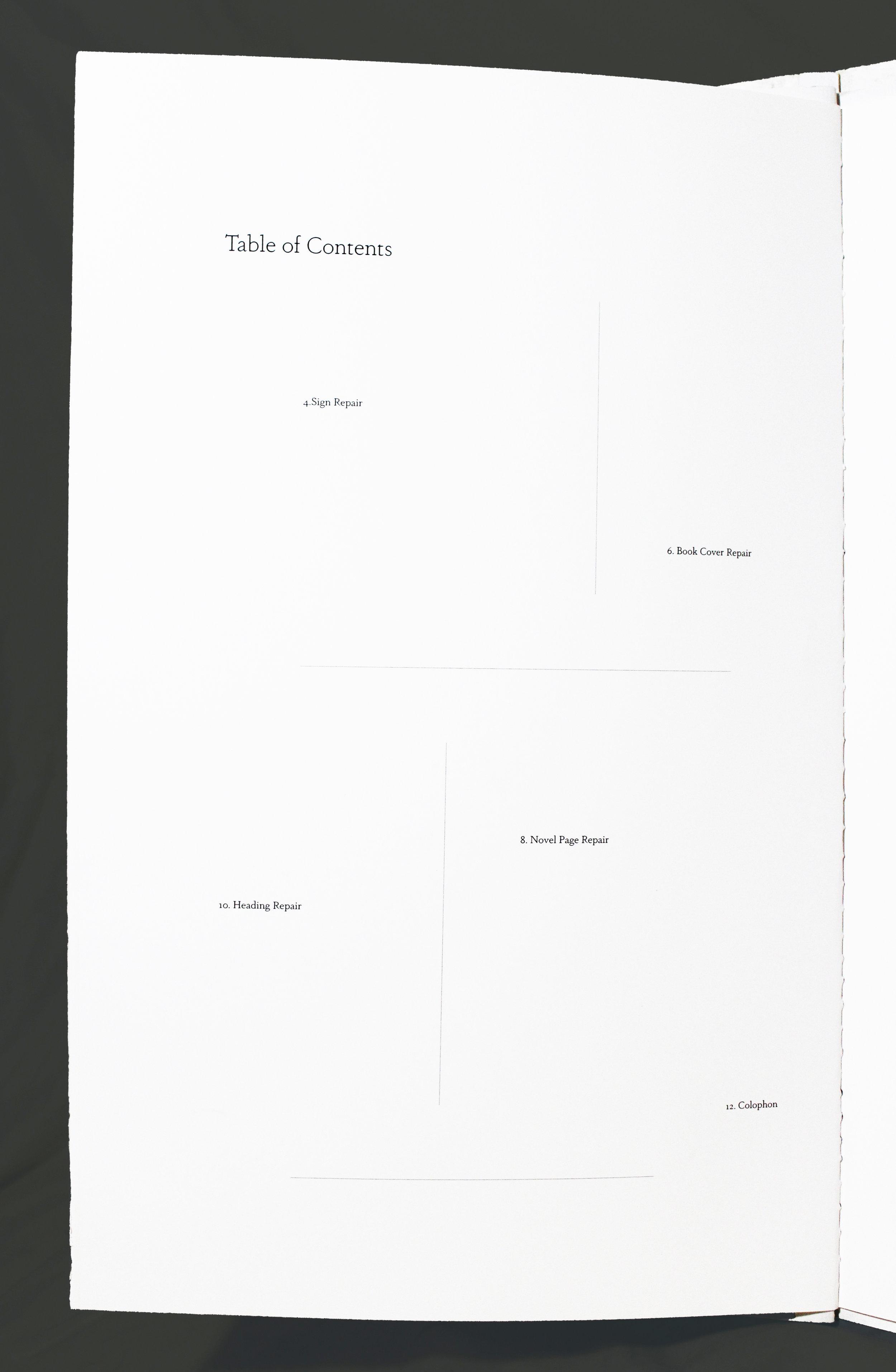 table of contents repair copy copy.jpg