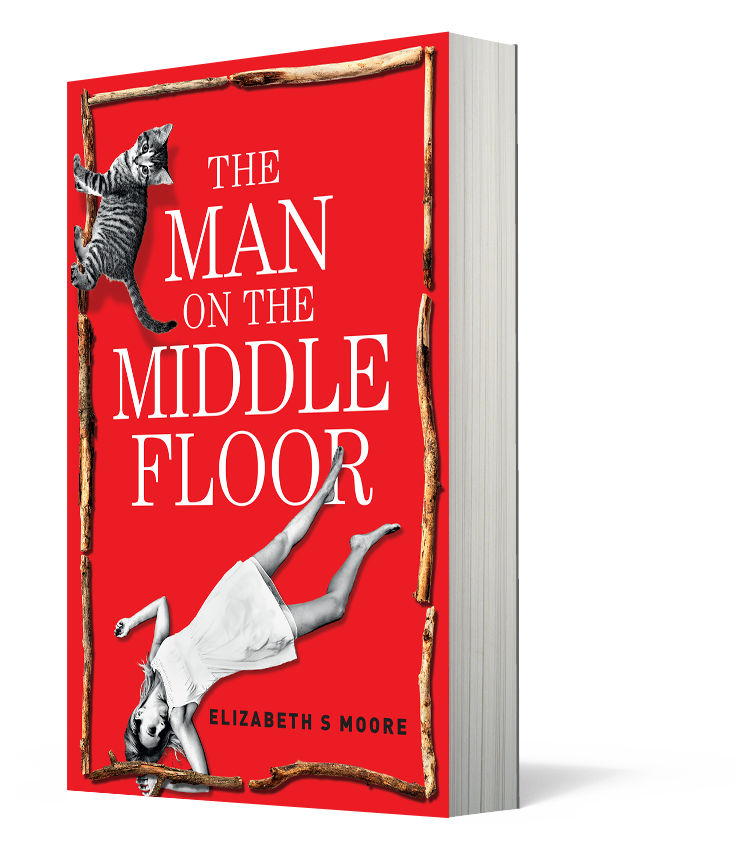 The Man on the Middle Floor by Elizabeth Moore