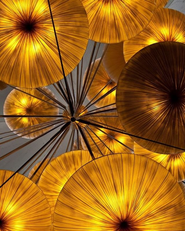 Pretty paper lanterns, in a golden yellow hue. _ #CuratedbyLR