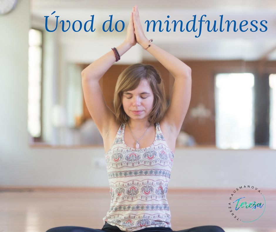 Úvod do mindfulness_fotka.png