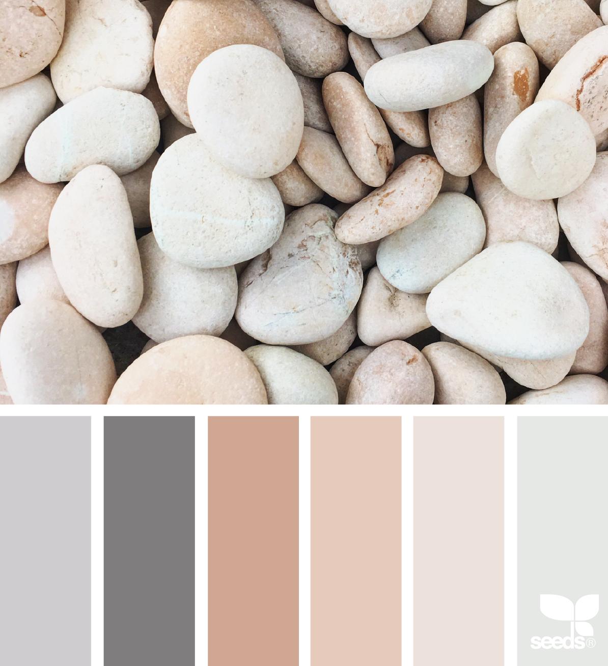 3 maneras de crear una paleta de color para tu página web - PLETÓRICA DESIGNS