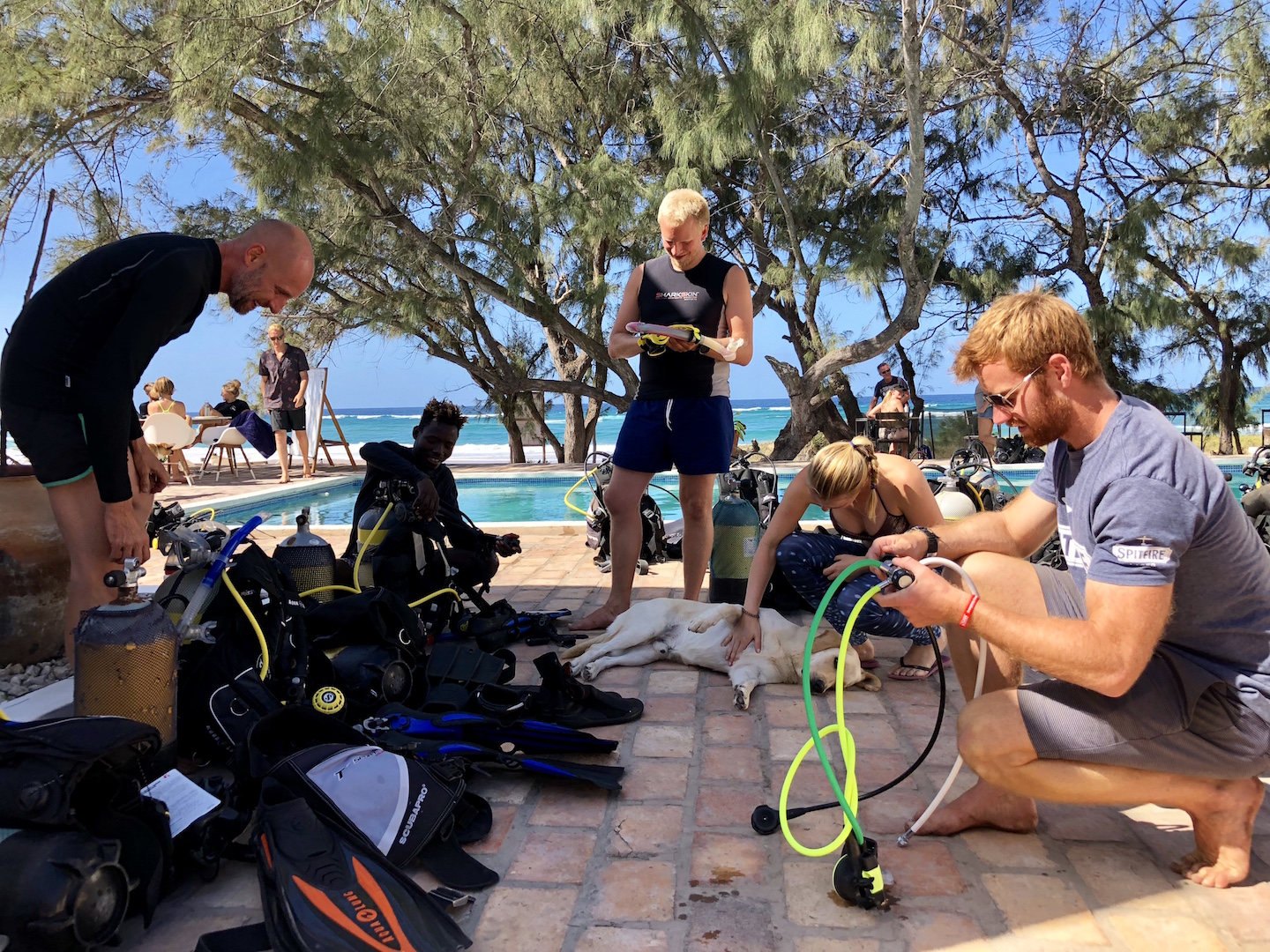 PADI instructor course in Tofo