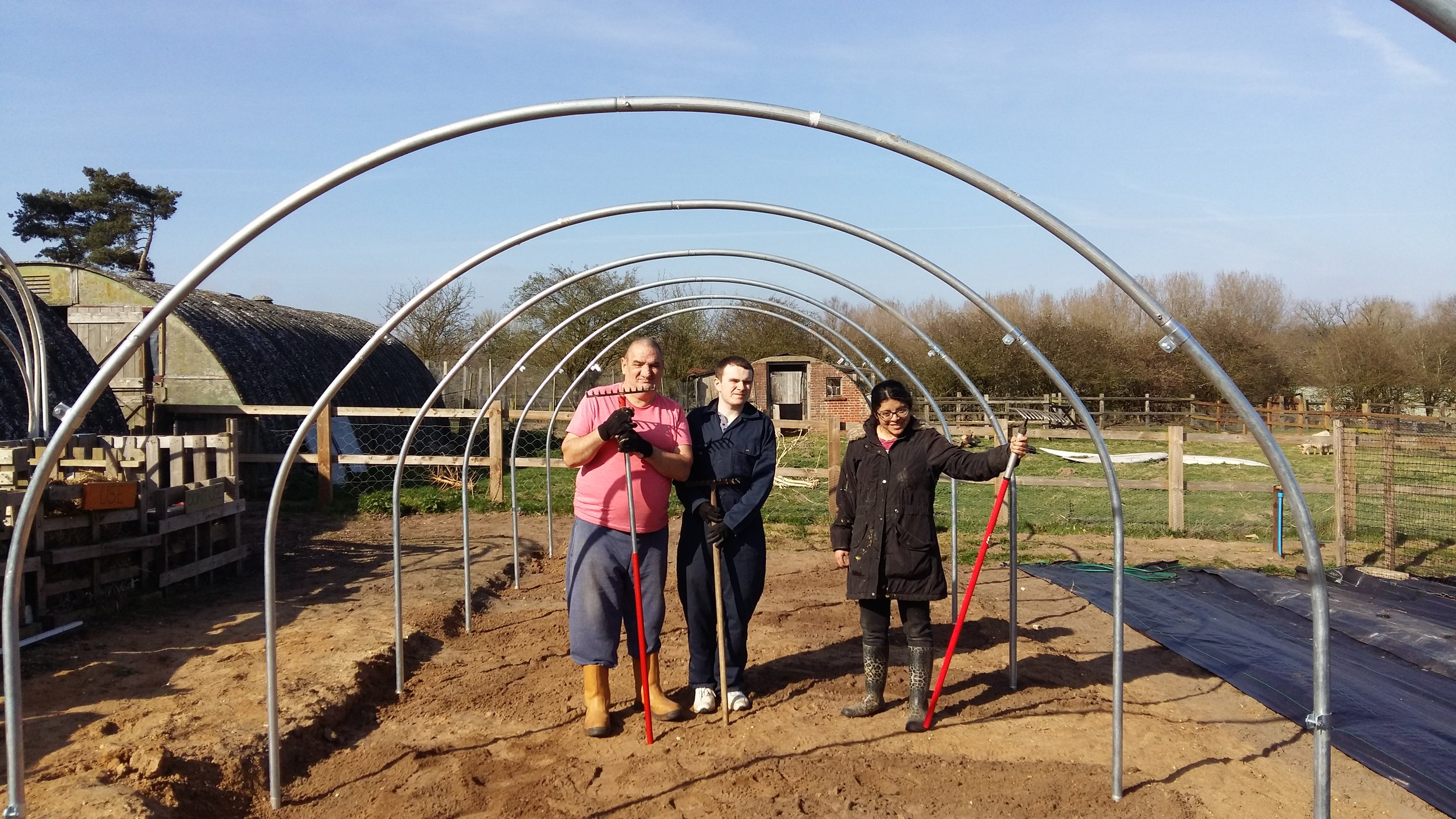 polytunnel hoops.jpg