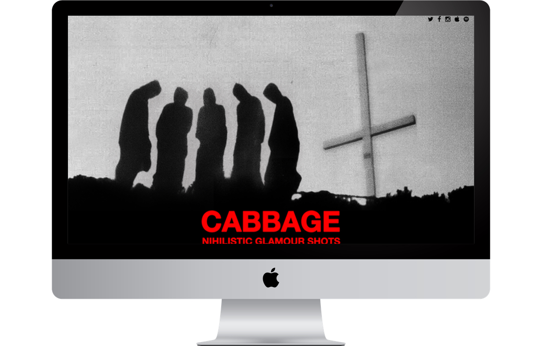 nextspace_cabbage.jpg