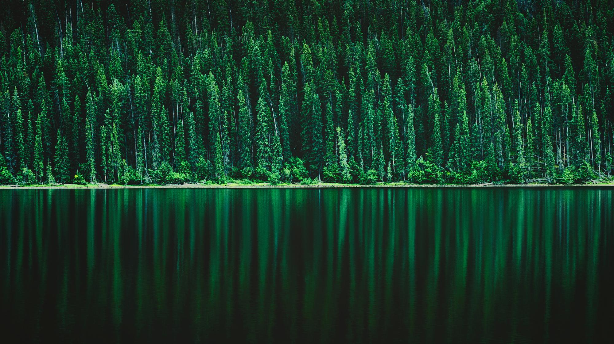 Atmospherics_Emerald_Refelctions_2000px.jpg
