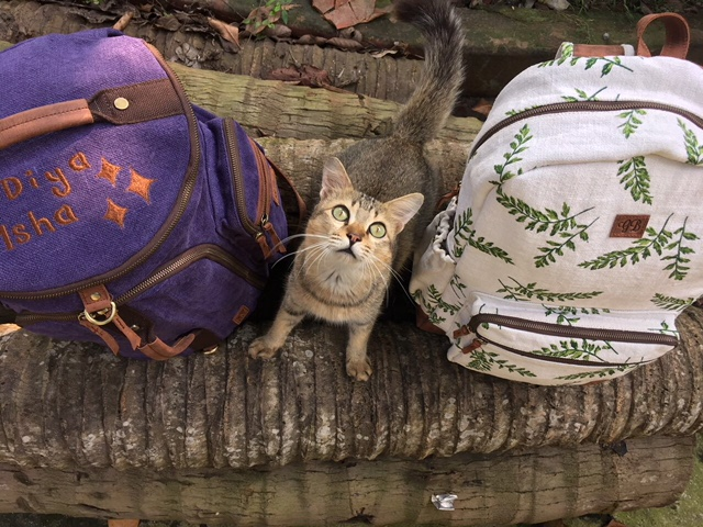 Three custom cats ready to ship. (The middle one is free - just take him.) -