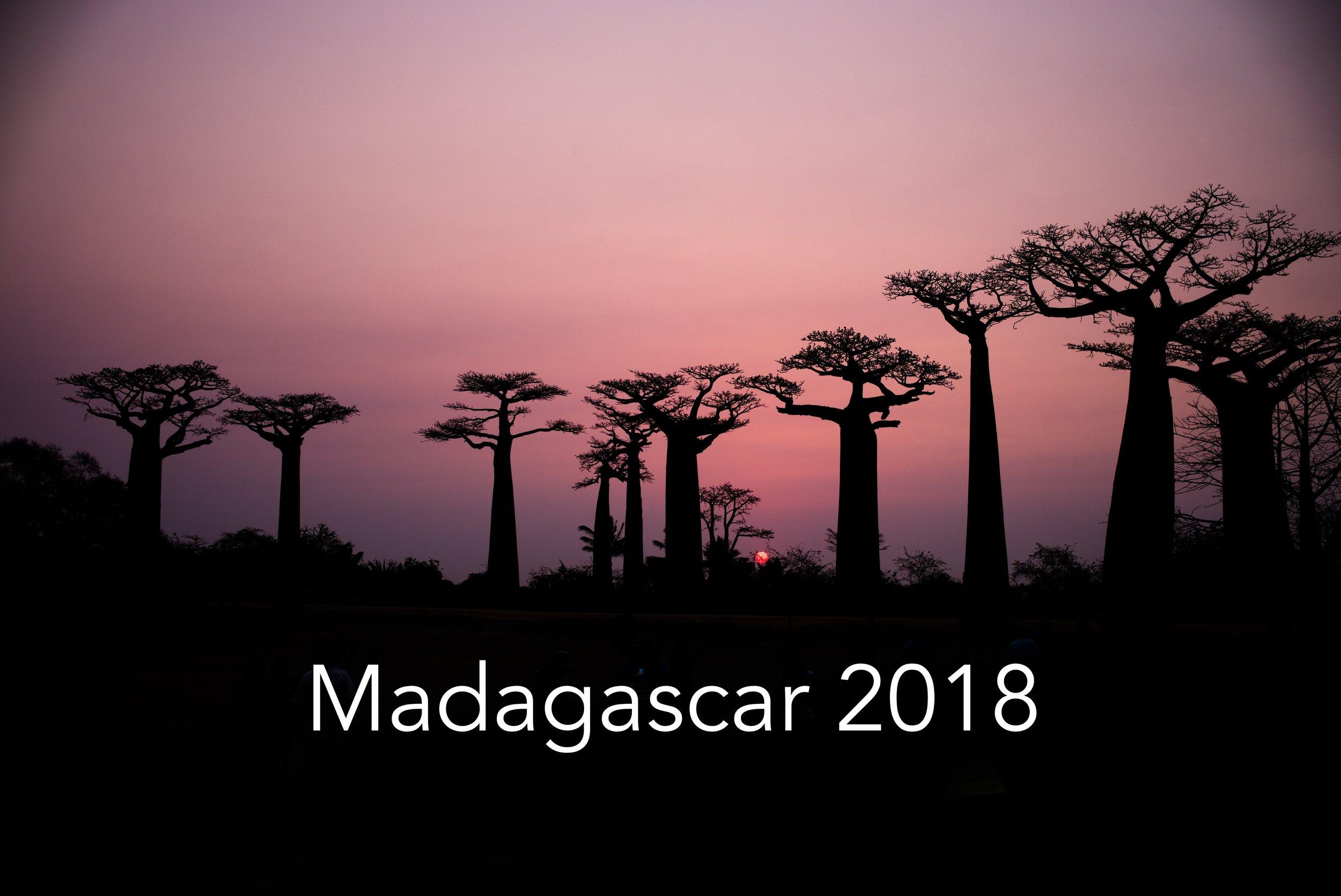 madagascar 2018 photop .jpg