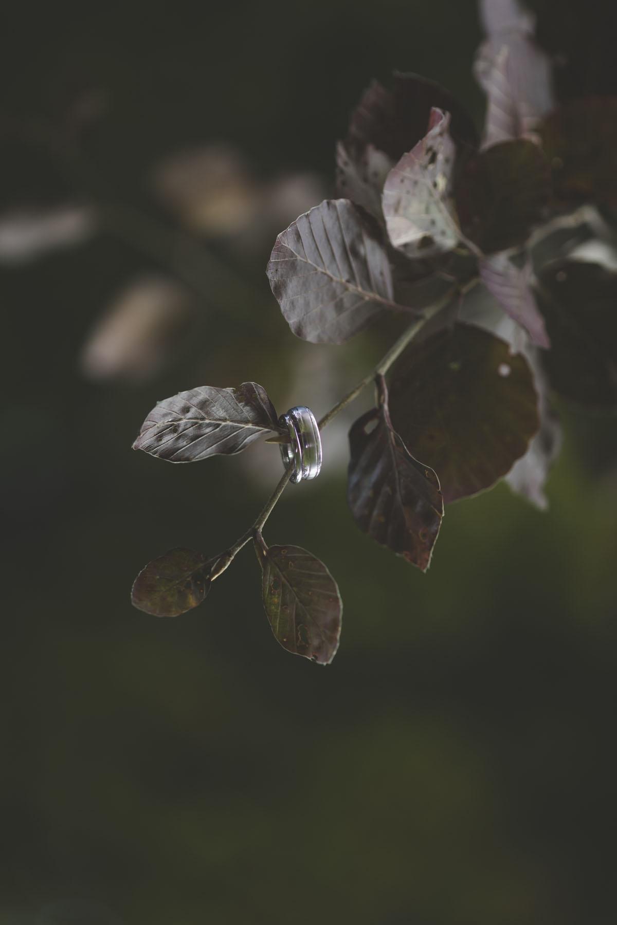 pulmafotod-015-pulmafotograaf-valdur-rosenvald.jpg
