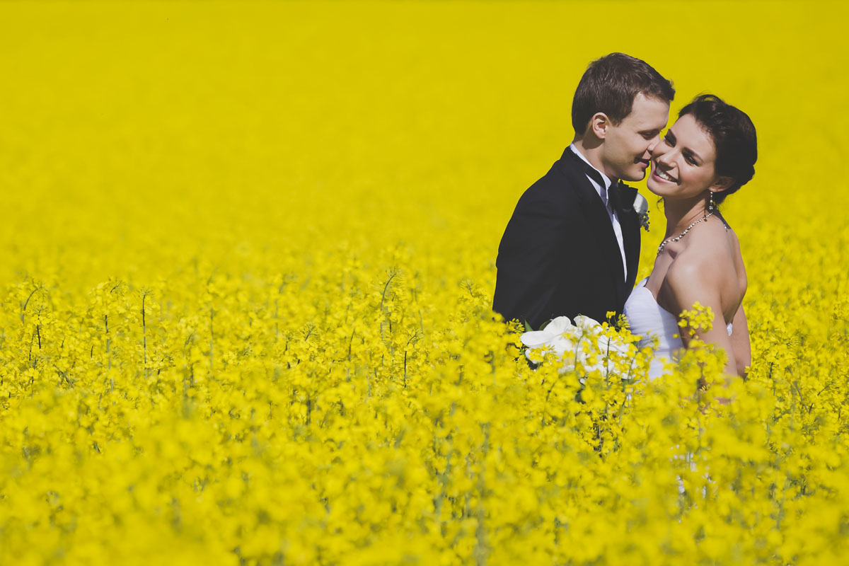 best-wedding-photographer-184-destination-wedding.jpg