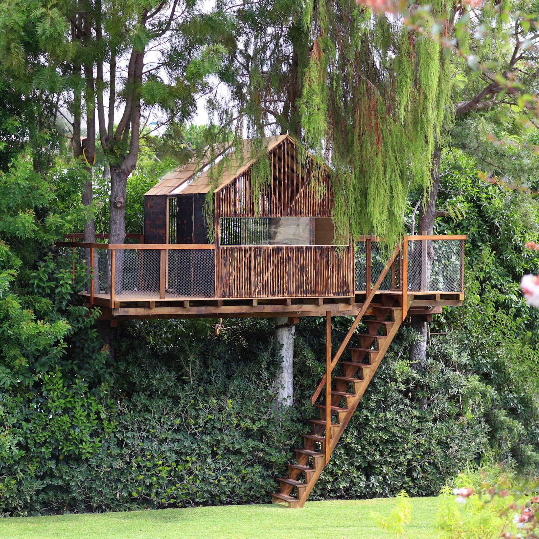 Casa na Árvore para Netos -