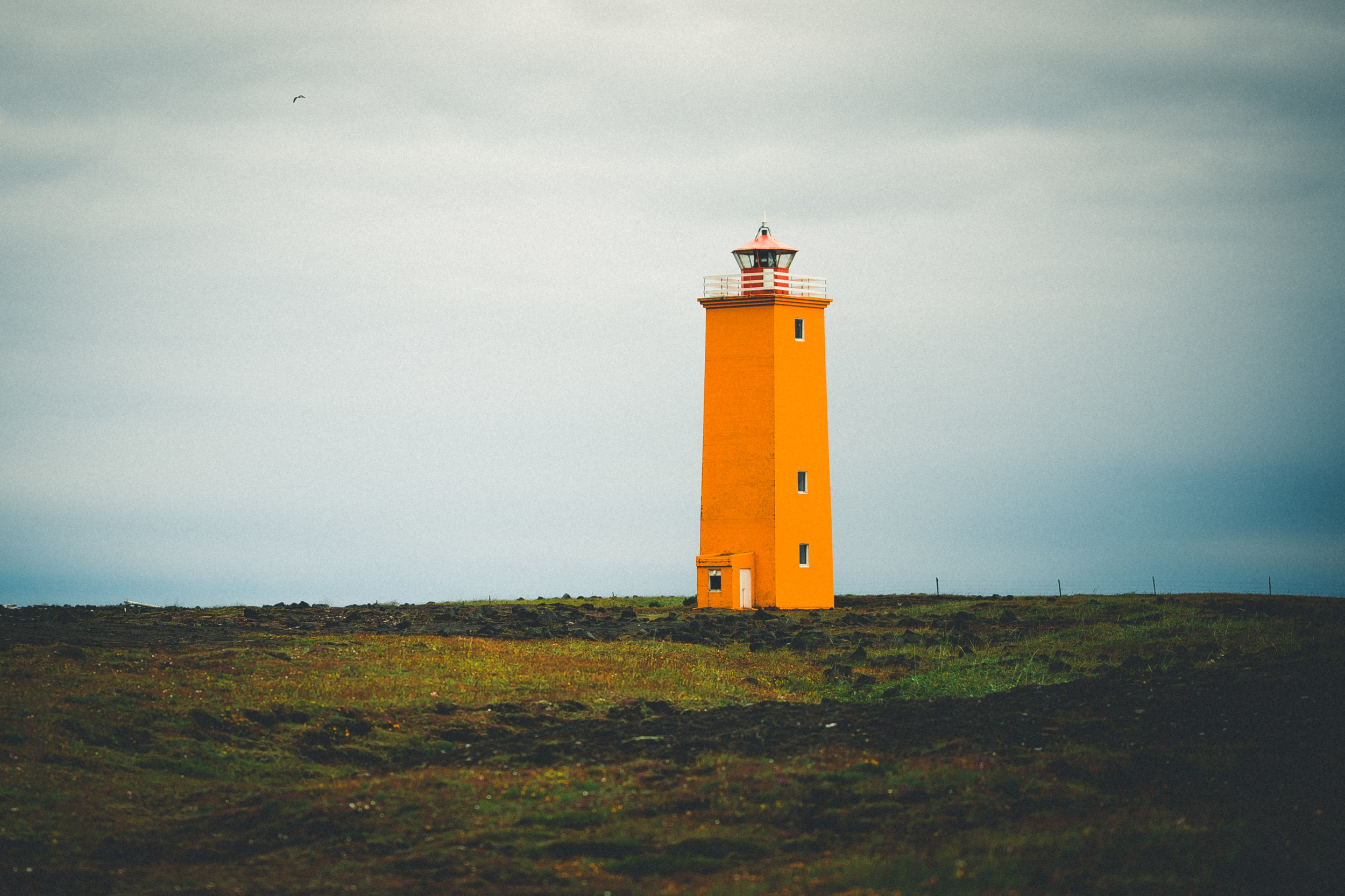 IcelandDay3-50.jpg