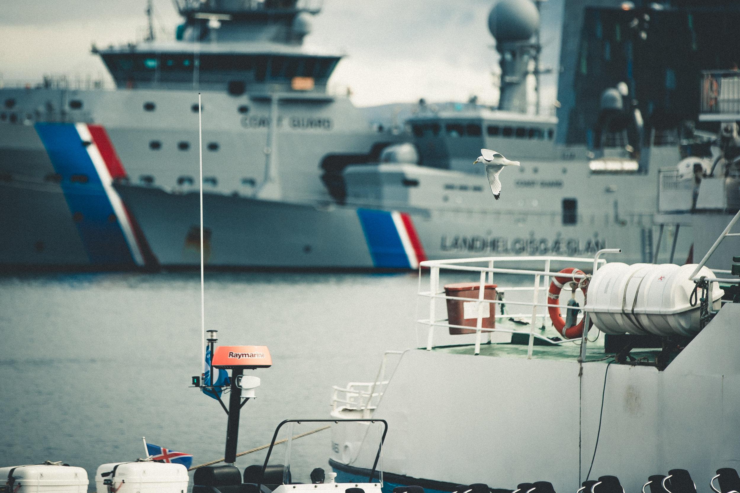 IcelandDay2-45.jpg